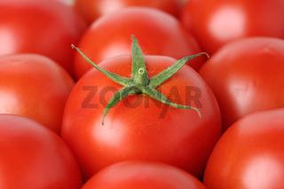 Nahaufnahme Tomate Gemüse