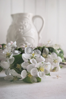 Apple blossom flowers with jug in background
