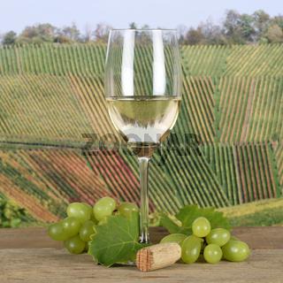 Weißwein im Weinglas in den Weinbergen