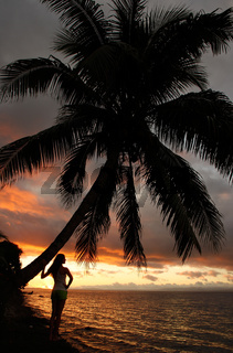Silhouetted young woman by the palm tree on a beach, Vanua Levu island, Fiji