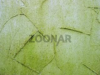 Algen am Außenputz
