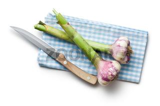 fresh garlic with knife and napkin