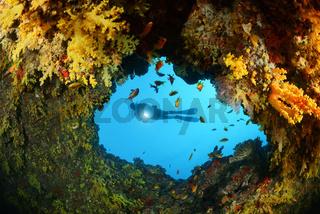Kleine Hoehle im Korallenriff mit Weichkorallen und Taucher, small cave in coralreef with soft corals and suba diver, Malediven, Maldives