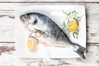 Sea bream with lemon on white tray.