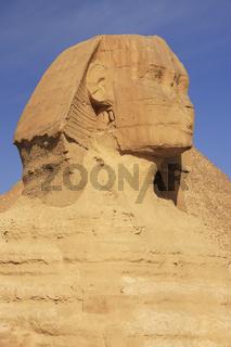 The Sphinx against blue sky, Cairo