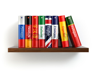 Dictionaries on bookshelf white isolated backgound.