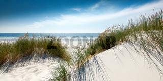 Nordsee Duenenlandschaft