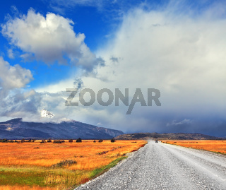 The road in the endless pampas