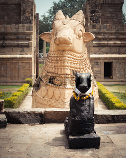 Statue of Nandi Bull at Hindu Temple. India