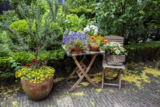 summer garden gate
