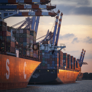 Hamburg Harbor Container Terminal