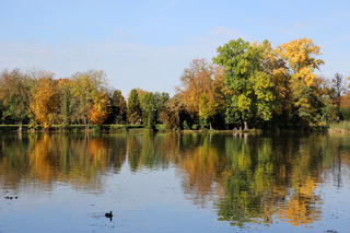Landschaft im Herbst mit bunten Bäumen und See