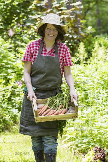 Frau mit geernteten Möhren, Woman harvesting carrots