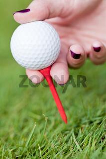 golf ball and iron on green grass detail macro summer outdoor