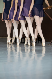 Five ballet dancers in class near the handrail, legs only. Model