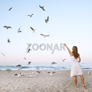 Woman at Beach are Feeding Seagulls