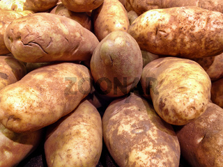 Large Russet Potatoes