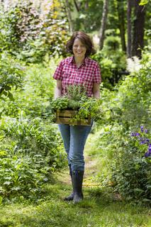 Junge Frau mit Kräutern im Garten, young woman with herbs in a garden