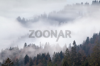 dense fog in mountains, Alps