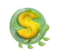 Dollar in a ball