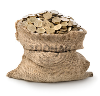 Bag with coins