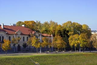 Golden maples town