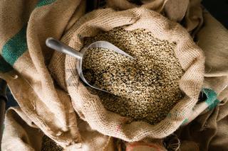 Raw Coffee Beans Seeds Bulk Burlap Sack Production Warehouse