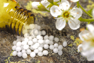 Alternative medicine and homeopathy with herbal pills