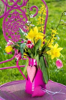 Tulpen und Narzissen