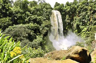 Thomson Wasserfälle