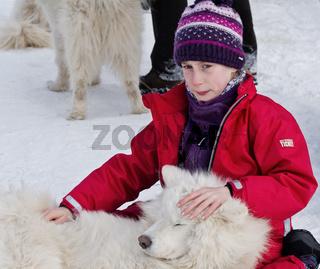 Schlittenhunderennen 1