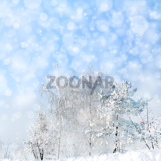 winter landscape with snowfall