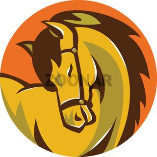 Horse Stallion Head Circle Retro