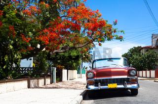 Kuba Oldtimer 3