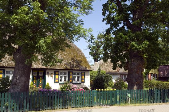 Foto Reetdachhaus, Mecklenburg-Vorpommern Bild #6820284