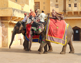 tourists on elephants in Jaipur fort India