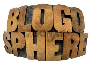 blogosphere word in wood type