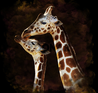 Watercolor Image Of Giraffes