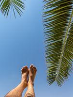 Entspannung pur unter der Palme
