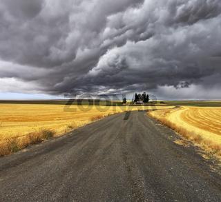 Thunder-storm above Montana.