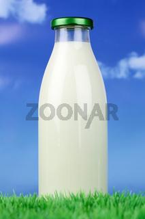 Frische Milch in der Flasche auf einer Wiese