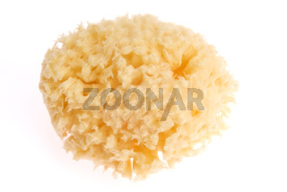 Bath sponge isolated on white background