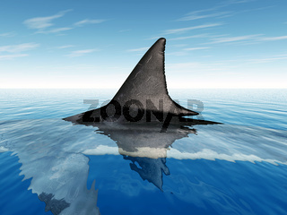 Haifischflosse