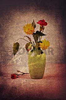 divine flower
