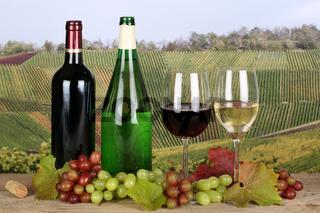 Wein in Weinflaschen in Weinbergen
