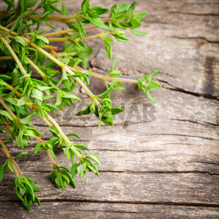 thyme on the wooden table