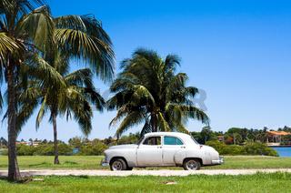 Kuba amerikanischer Oldtimer 1