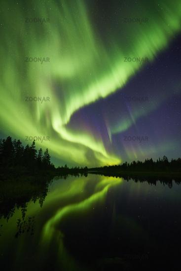 Nordlicht (Aurora borealis) ueber einem See, Lappland