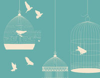 Birds and birdcages postcard 5