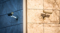 Überwachungskameras lassen sich nichts entgehen